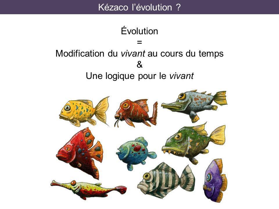 Kézaco lévolution ? Évolution = Modification du vivant au cours du temps & Une logique pour le vivant