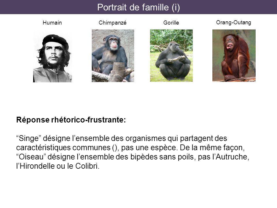 Portrait de famille (i) HumainChimpanzéGorille Orang-Outang Réponse rhétorico-frustrante: Singe désigne lensemble des organismes qui partagent des car