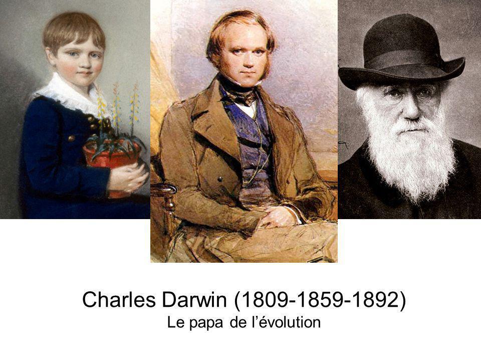 Charles Darwin (1809-1859-1892) Le papa de lévolution