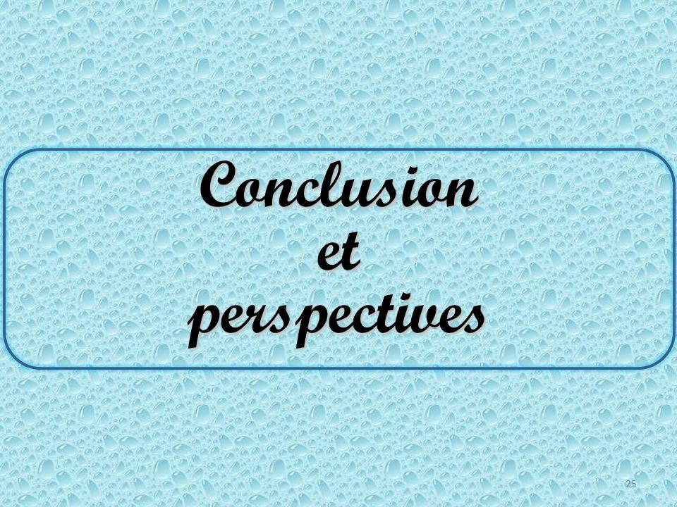 Conclusion et perspectives 25