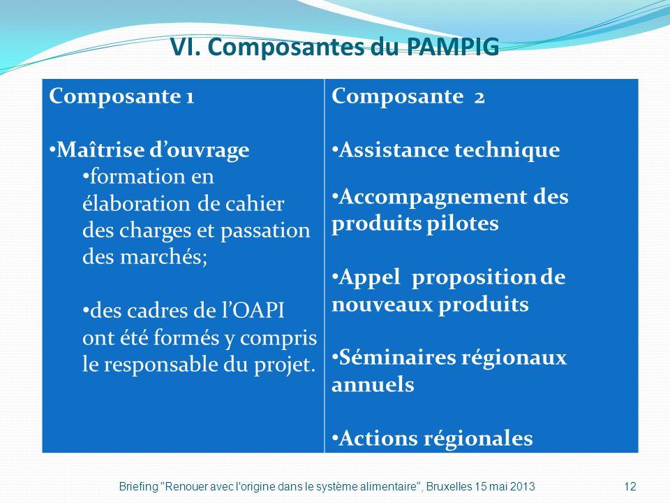 VI. Composantes du PAMPIG Briefing