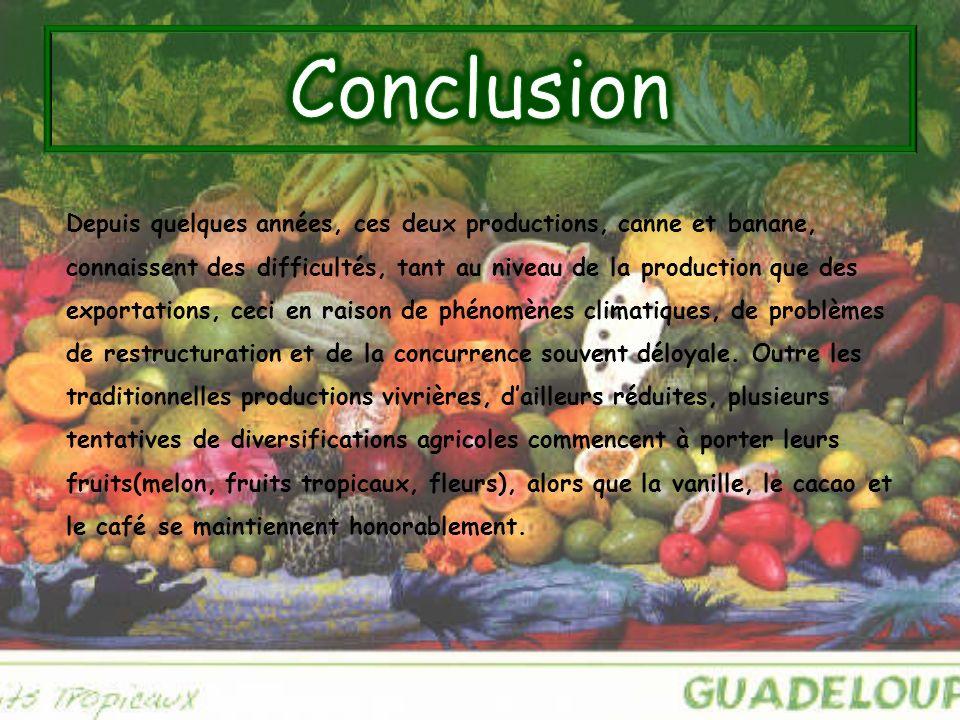 Depuis quelques années, ces deux productions, canne et banane, connaissent des difficultés, tant au niveau de la production que des exportations, ceci