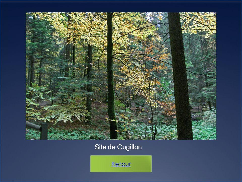 Site de Cugillon Retour