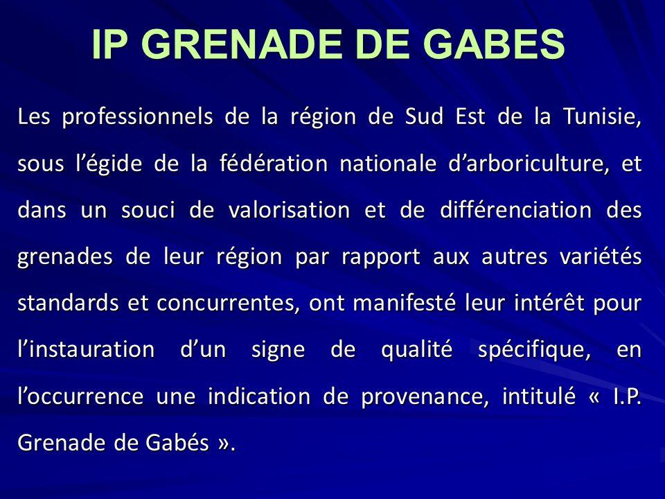 Les professionnels de la région de Sud Est de la Tunisie, sous légide de la fédération nationale darboriculture, et dans un souci de valorisation et d