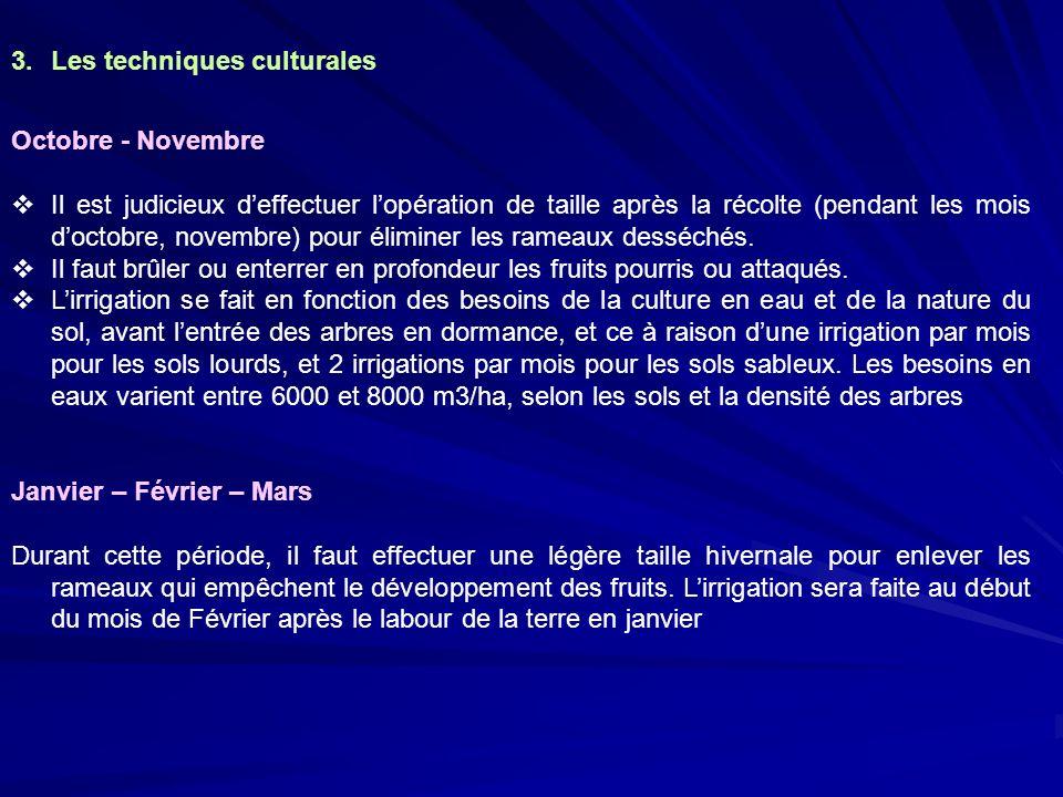 3.Les techniques culturales Octobre - Novembre Il est judicieux deffectuer lopération de taille après la récolte (pendant les mois doctobre, novembre)