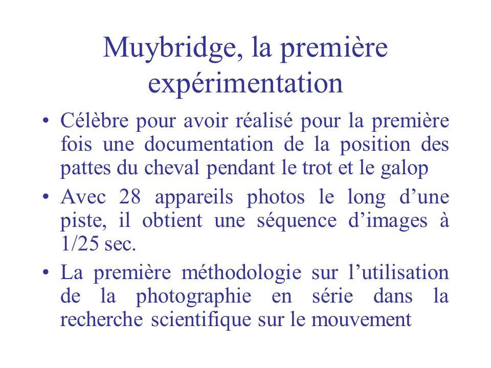 Muybridge, la première expérimentation Célèbre pour avoir réalisé pour la première fois une documentation de la position des pattes du cheval pendant