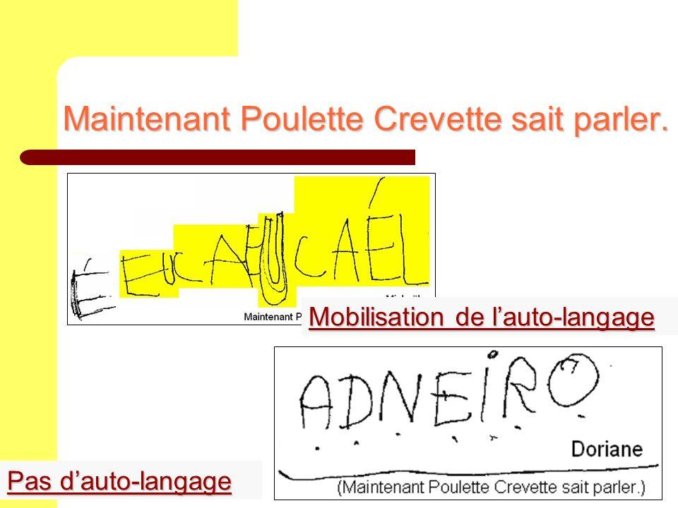 Maintenant Poulette Crevette sait parler. Mobilisation de lauto-langage Mobilisation de lauto-langage Pas dauto-langage Pas dauto-langage