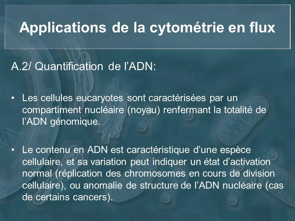 Applications de la cytométrie en flux A.2/ Quantification de lADN: Les cellules eucaryotes sont caractérisées par un compartiment nucléaire (noyau) re