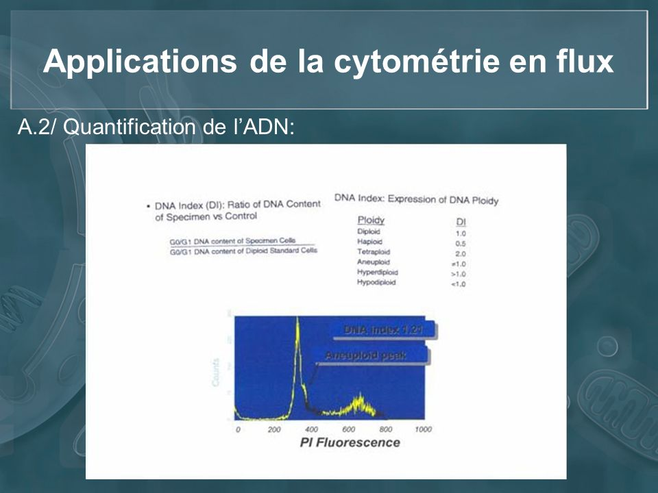 Applications de la cytométrie en flux A.2/ Quantification de lADN: