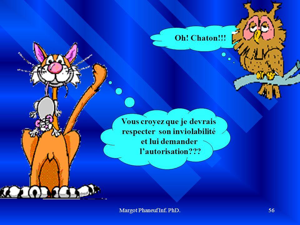 Margot Phaneuf Inf. PhD.56 Oh! Chaton!!! Vous croyez que je devrais respecter son inviolabilité et lui demander lautorisation???