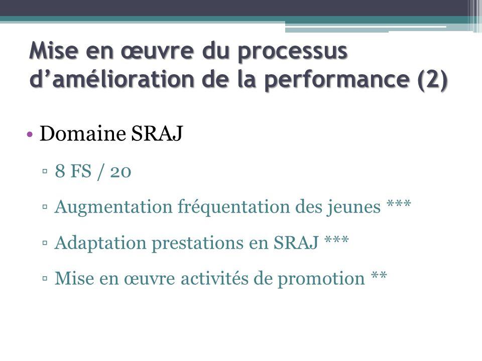 Mise en œuvre du processus damélioration de la performance (2) Domaine SRAJ 8 FS / 20 Augmentation fréquentation des jeunes *** Adaptation prestations en SRAJ *** Mise en œuvre activités de promotion **