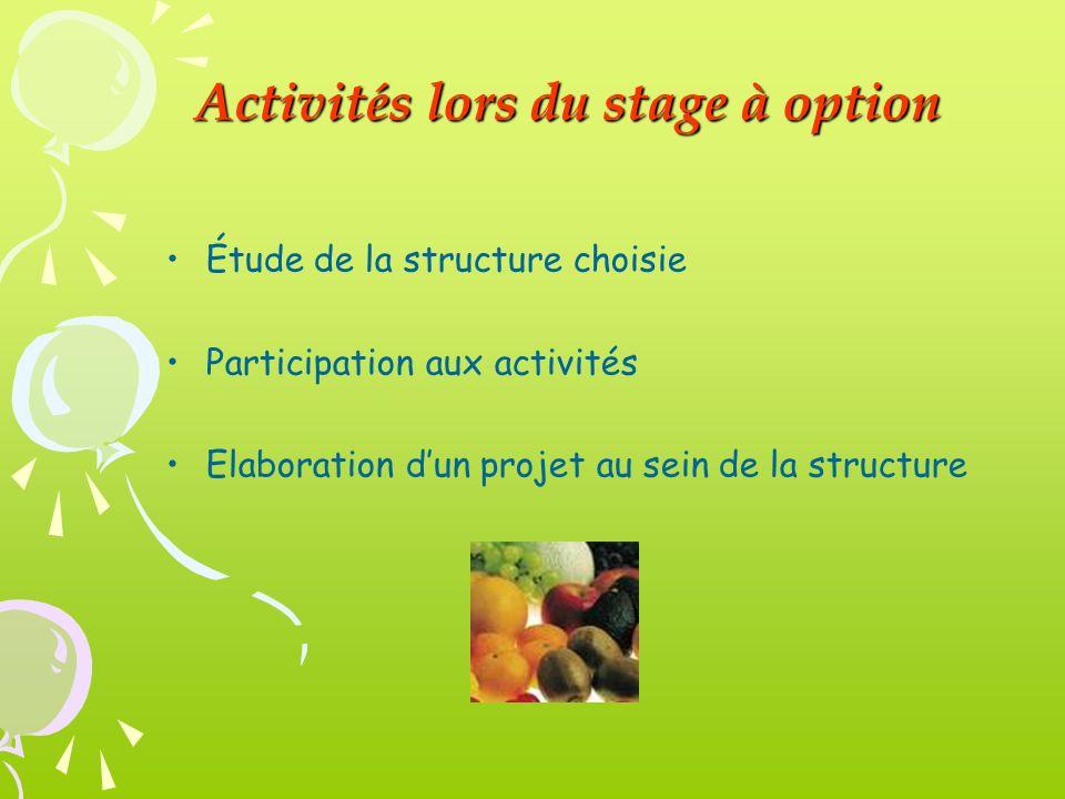 Étude de la structure choisie Participation aux activités Elaboration dun projet au sein de la structure Activités lors du stage à option