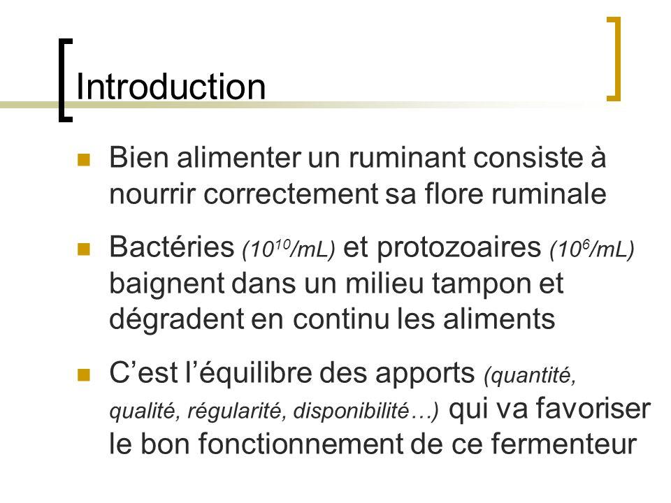 Introduction Bien alimenter un ruminant consiste à nourrir correctement sa flore ruminale Bactéries (10 10 /mL) et protozoaires (10 6 /mL) baignent dans un milieu tampon et dégradent en continu les aliments Cest léquilibre des apports (quantité, qualité, régularité, disponibilité…) qui va favoriser le bon fonctionnement de ce fermenteur