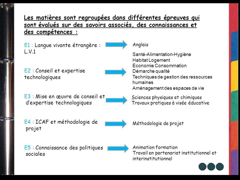 E1 : Langue vivante étrangère : L.V.1 E2 : Conseil et expertise technologiques E3 : Mise en œuvre de conseil et dexpertise technologiques E4 : ICAF et