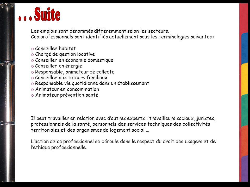 Les emplois sont dénommés différemment selon les secteurs. Ces professionnels sont identifiés actuellement sous les terminologies suivantes : o Consei