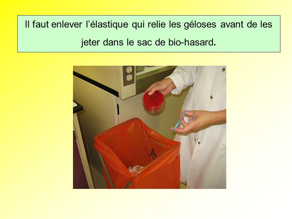 Il faut enlever les élastiques qui relie les boites avant de les jeter dans le sac de bio-hasard Il faut enlever lélastique qui relie les géloses avant de les jeter dans le sac de bio-hasard.