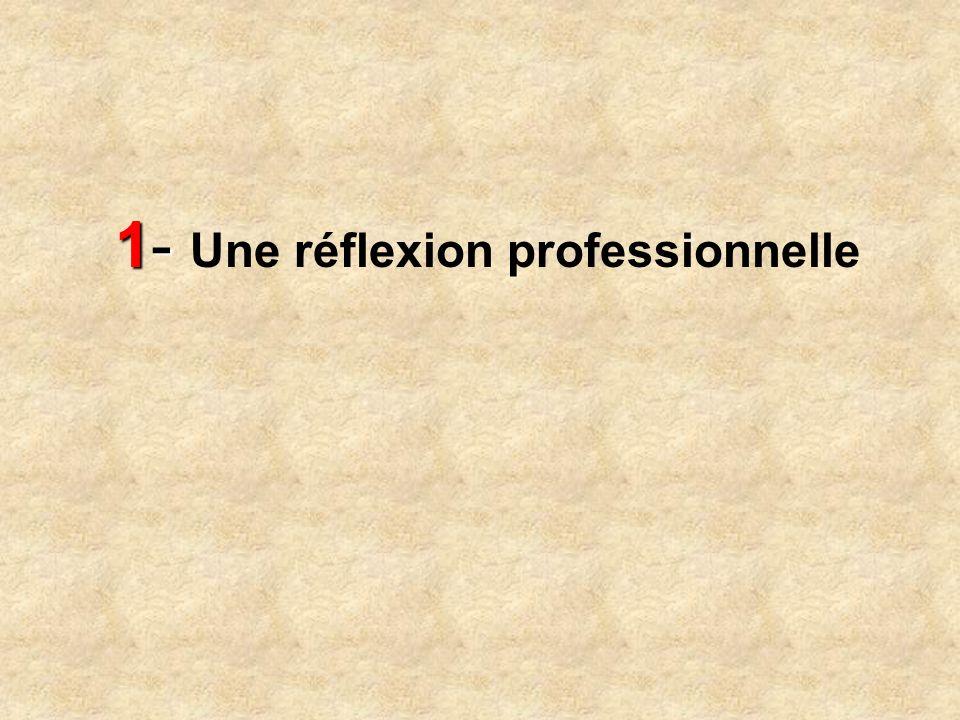 1- 1- Une réflexion professionnelle