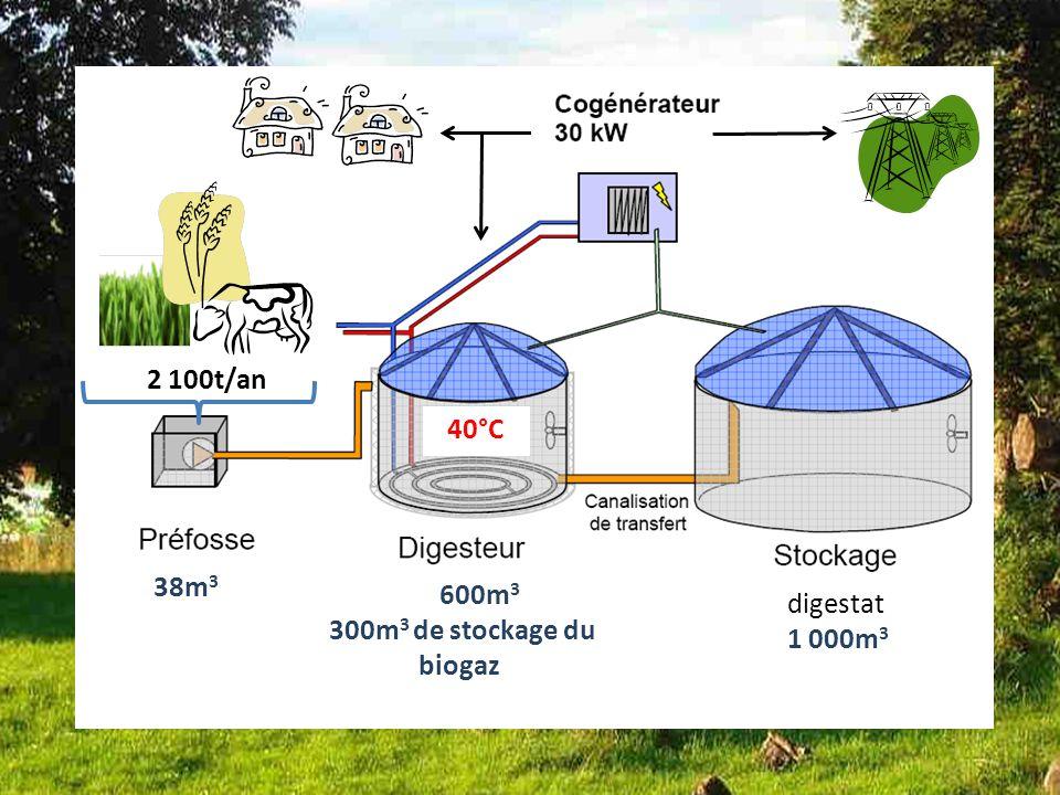 Bilan dune des installations Françaises installation 3 600m 3 300m 3 de stockage du biogaz 38m 3 digestat 1 000m 3 2 100t/an 40°C