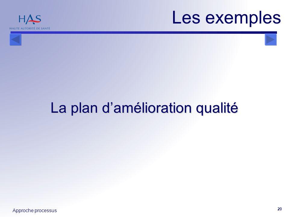 Approche processus 20 La plan damélioration qualité Les exemples