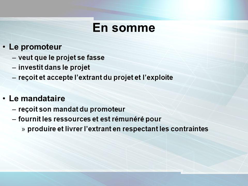13 En somme Le promoteur –veut que le projet se fasse –investit dans le projet –reçoit et accepte lextrant du projet et lexploite Le mandataire –reçoi