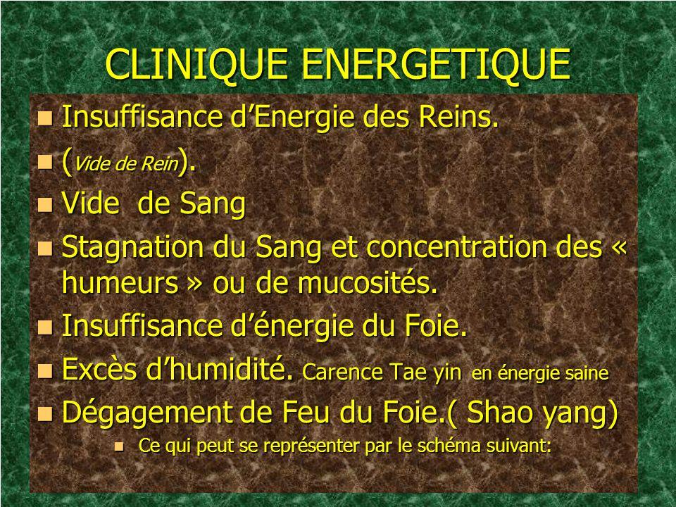 CLINIQUE ENERGETIQUE Insuffisance dEnergie des Reins. Insuffisance dEnergie des Reins. ( Vide de Rein ). ( Vide de Rein ). Vide de Sang Vide de Sang S