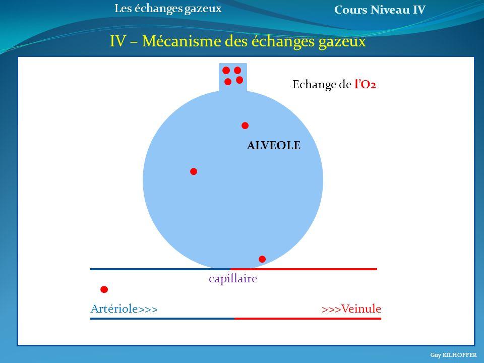 Cours Niveau IV Guy KILHOFFER Les échanges gazeux IV – Mécanisme des échanges gazeux a Artériole>>>>>>Veinule capillaire ALVEOLE Echange de lO2
