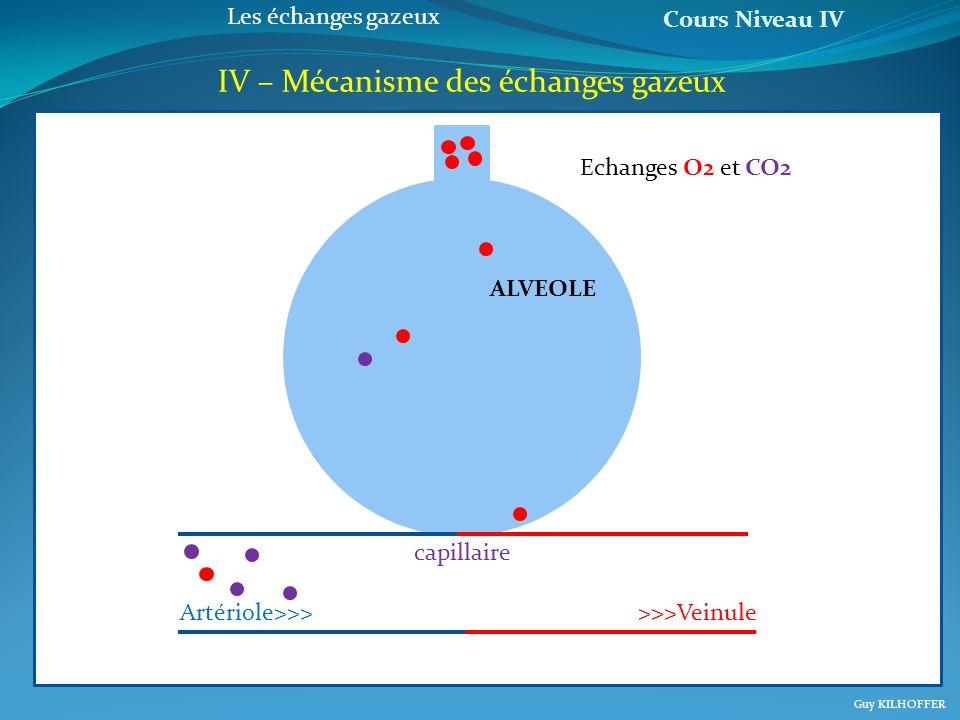 Cours Niveau IV Guy KILHOFFER Les échanges gazeux IV – Mécanisme des échanges gazeux a Artériole>>>>>>Veinule capillaire ALVEOLE Echanges O2 et CO2