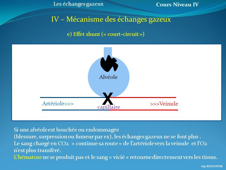 Cours Niveau IV Guy KILHOFFER Les échanges gazeux IV – Mécanisme des échanges gazeux e) Effet shunt (« court-circuit ») Si une alvéole est bouchée ou
