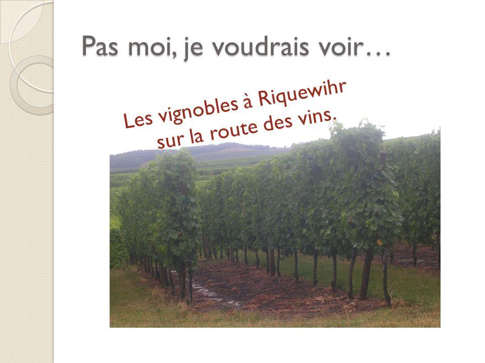 Pas moi, je voudrais voir… Les vignobles à Riquewihr sur la route des vins.