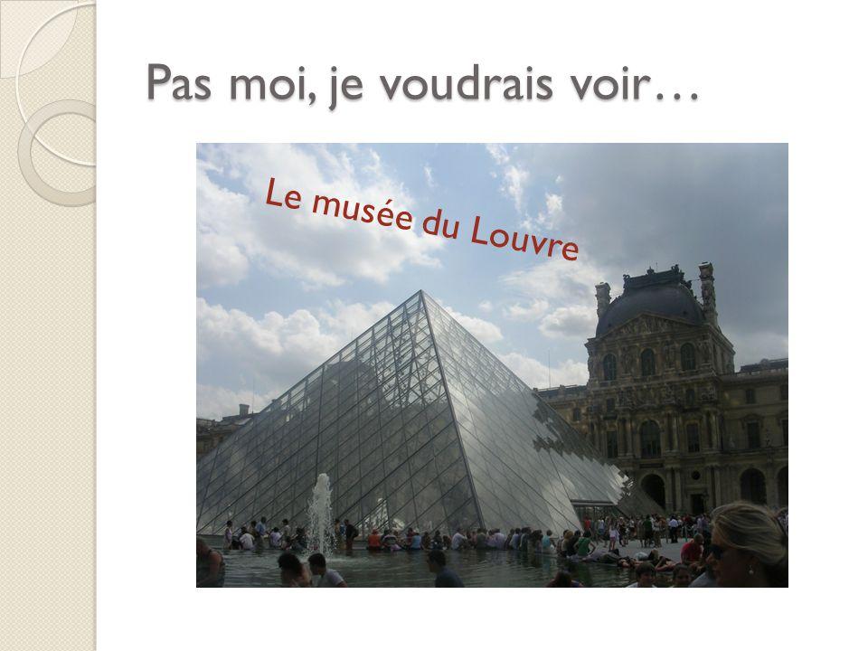 Pas moi, je voudrais voir… Le musée du Louvre