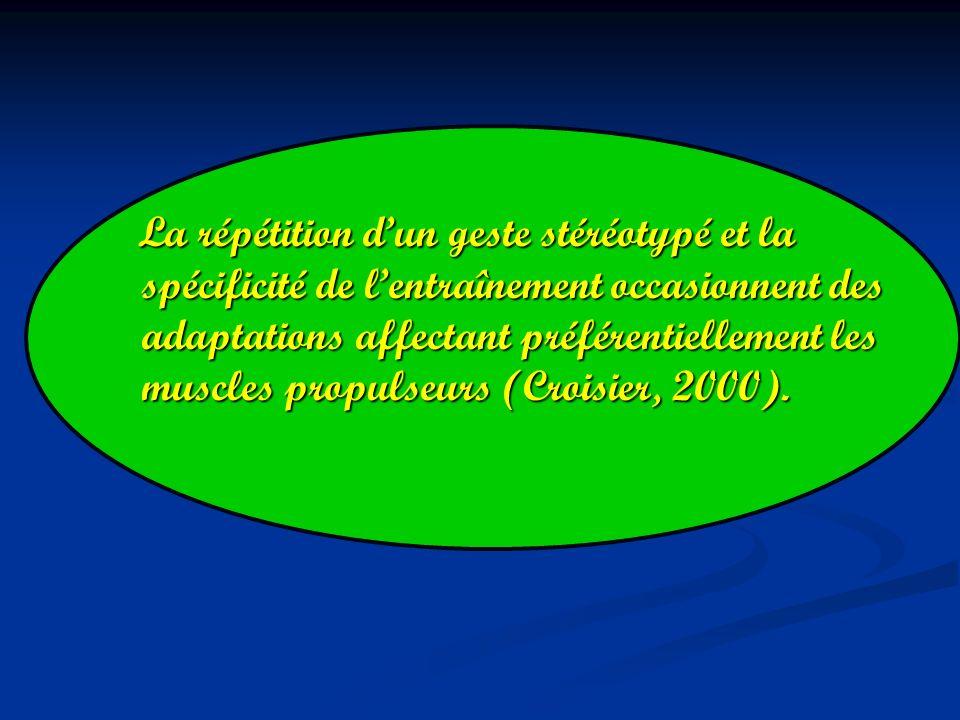 La répétition dun geste stéréotypé et la spécificité de lentraînement occasionnent des adaptations affectant préférentiellement les muscles propulseurs (Croisier, 2000).