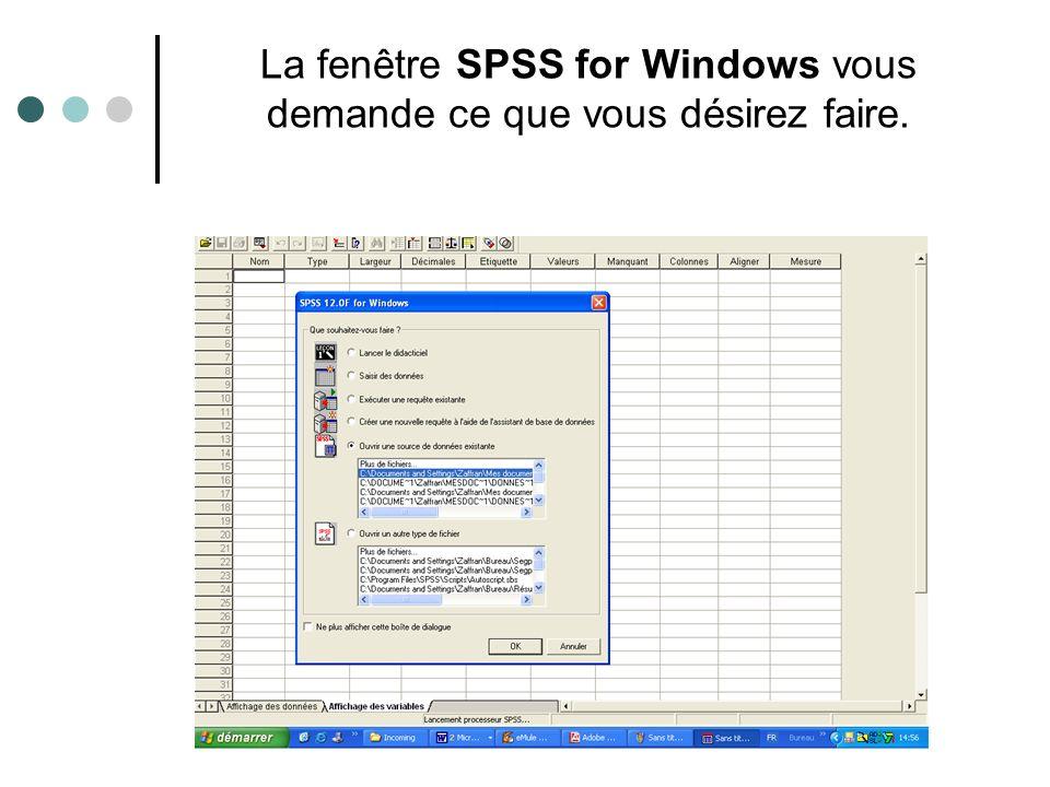 Note : L extension par défaut d un fichier de données SPSS est (.sav) ; il n est pas nécessaire de l inscrire.