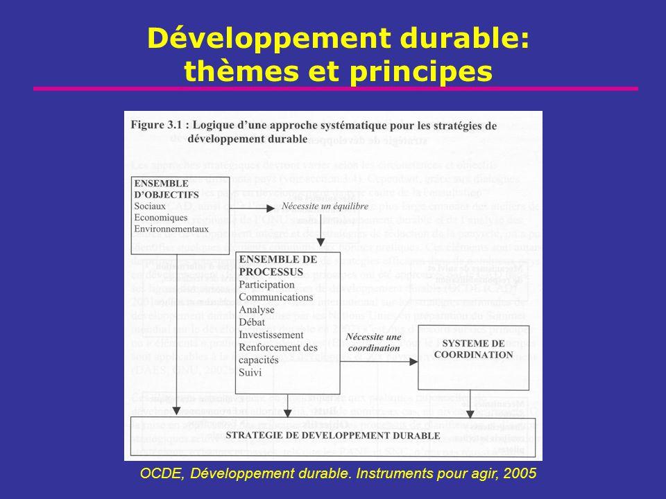 Développement durable: thèmes et principes OCDE, Développement durable. Instruments pour agir, 2005