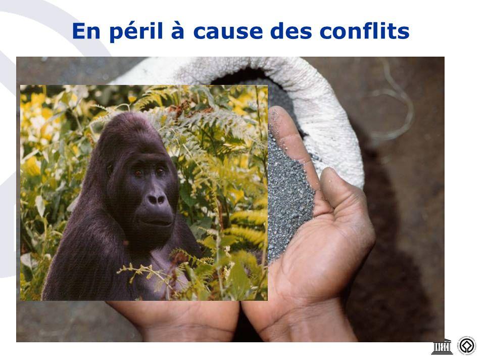 En péril à cause des conflits