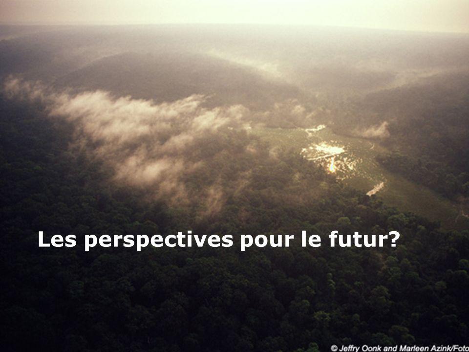 Les perspectives pour le futur?
