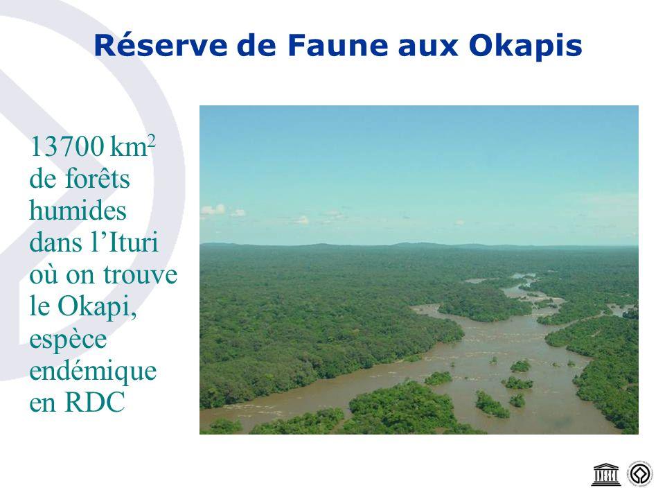 Réserve de Faune aux Okapis 13700 km 2 de forêts humides dans lIturi où on trouve le Okapi, espèce endémique en RDC