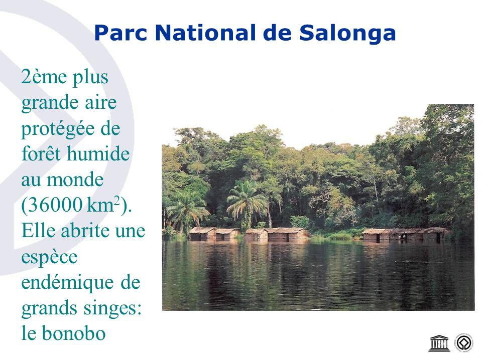 Parc National de Salonga 2ème plus grande aire protégée de forêt humide au monde (36000 km 2 ). Elle abrite une espèce endémique de grands singes: le