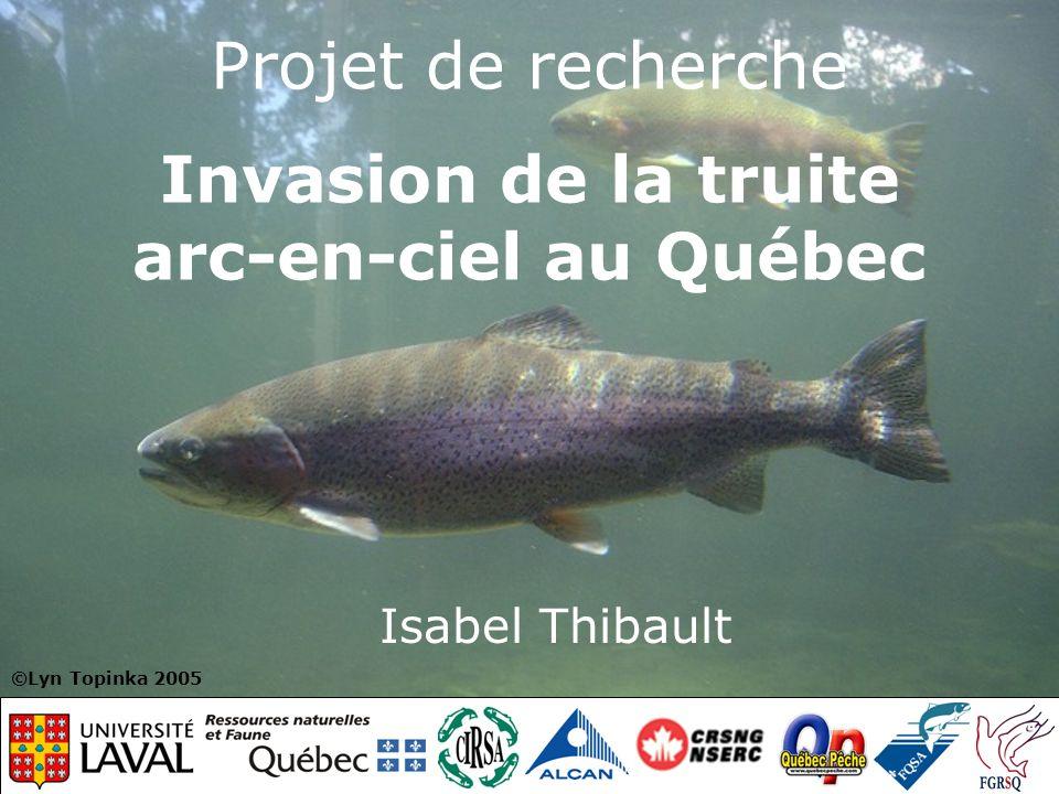 Projet de recherche Invasion de la truite arc-en-ciel au Québec Isabel Thibault ©Lyn Topinka 2005