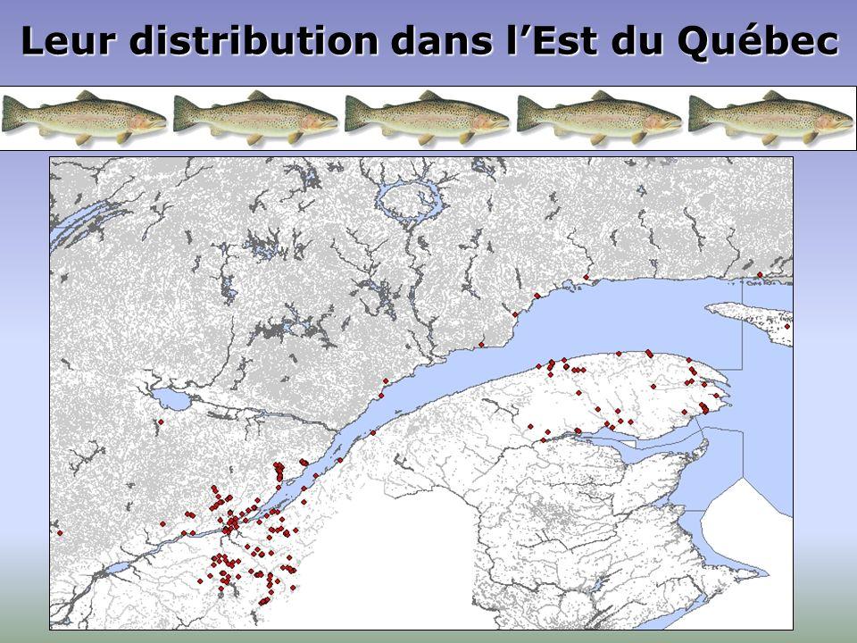 Leur distribution dans lEst du Québec