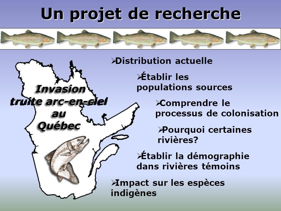 Un projet de recherche Distribution actuelle Établir les populations sources Comprendre le processus de colonisation Pourquoi certaines rivières? Impa