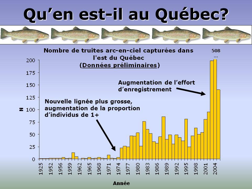 Quen est-il au Québec? 508 … Nouvelle lignée plus grosse, augmentation de la proportion dindividus de 1+ Augmentation de leffort denregistrement