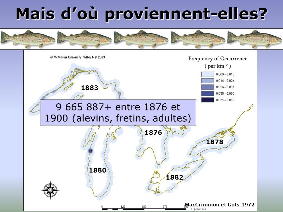Grands Lacs Mais doù proviennent-elles? 1878 1882 1876 18801883 MacCrimmon et Gots 1972 9 665 887+ entre 1876 et 1900 (alevins, fretins, adultes)