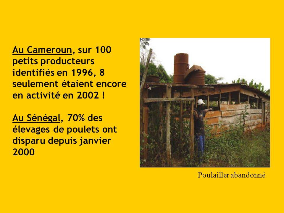 Au Cameroun, sur 100 petits producteurs identifiés en 1996, 8 seulement étaient encore en activité en 2002 ! Au Sénégal, 70% des élevages de poulets o