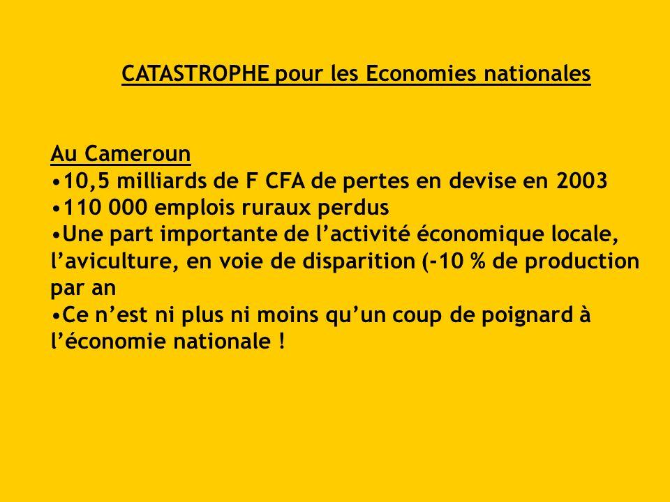 CATASTROPHE pour les Economies nationales Au Cameroun 10,5 milliards de F CFA de pertes en devise en 2003 110 000 emplois ruraux perdus Une part impor