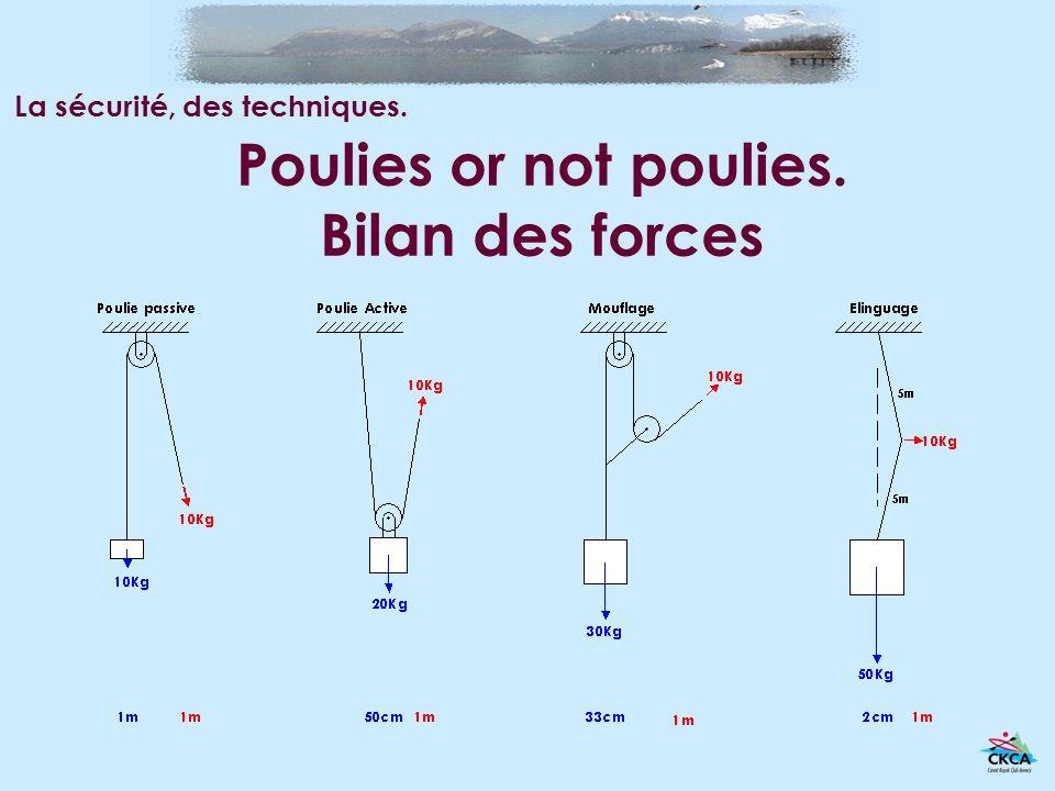 Poulies or not poulies. Bilan des forces La sécurité, des techniques.