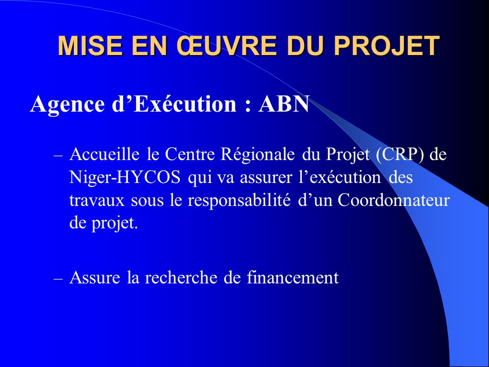 MISE EN ŒUVRE DU PROJET Agence dExécution : ABN – Accueille le Centre Régionale du Projet (CRP) de Niger-HYCOS qui va assurer lexécution des travaux s