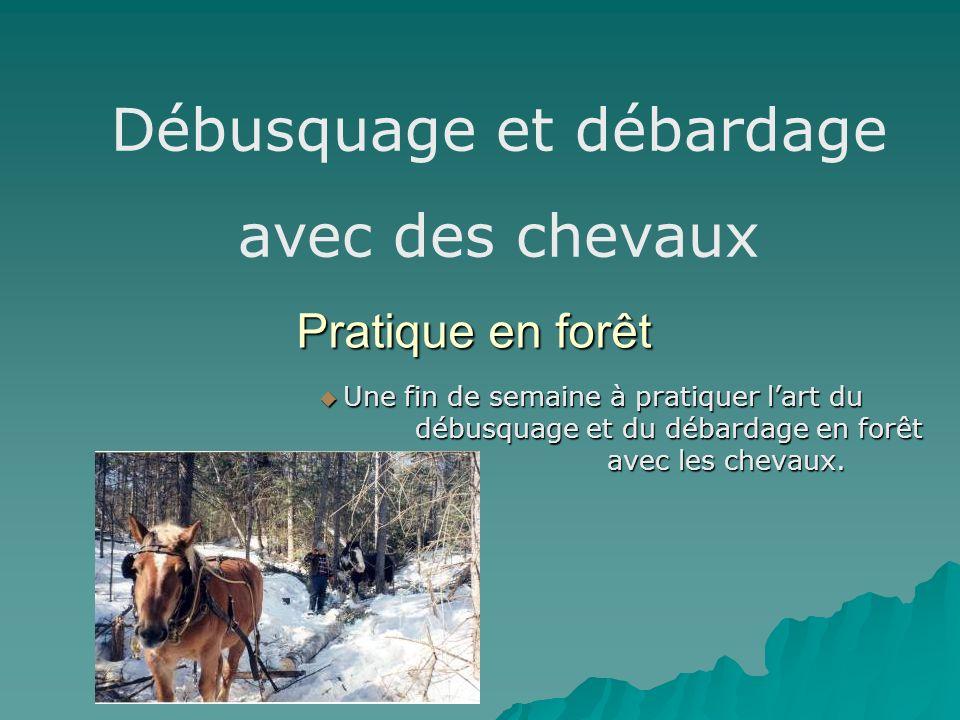 Pratique en forêt Une fin de semaine à pratiquer lart du débusquage et du débardage en forêt avec les chevaux. Une fin de semaine à pratiquer lart du