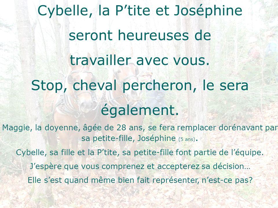 Cybelle, la Ptite et Joséphine seront heureuses de travailler avec vous. Stop, cheval percheron, le sera également. Maggie, la doyenne, âgée de 28 ans