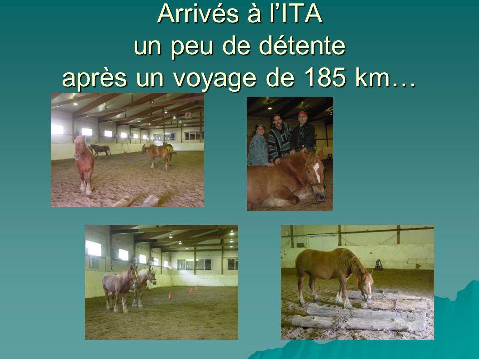 Arrivés à lITA un peu de détente après un voyage de 185 km…