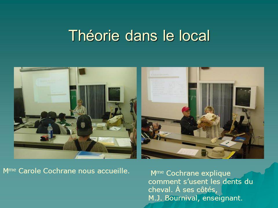 Théorie dans le local M me Carole Cochrane nous accueille. M me Cochrane explique comment susent les dents du cheval. À ses côtés, M.J. Bournival, ens